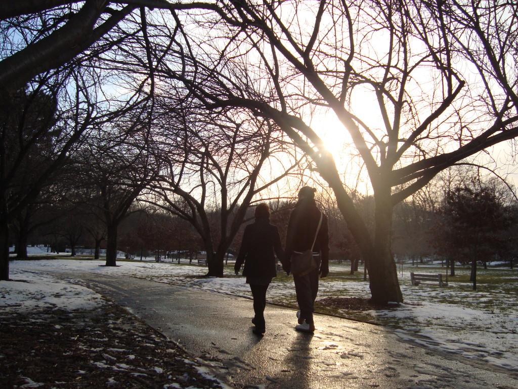 Nova York Brooklyn Park parque