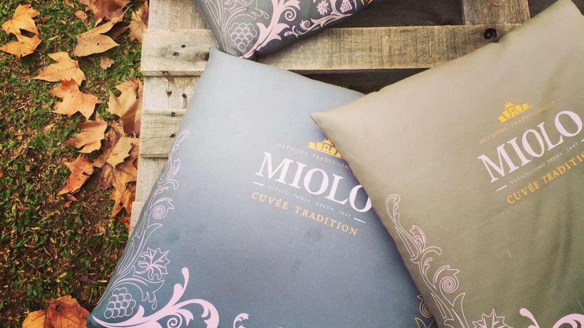 Wine Garden Miolo: Jardim no Vale dos Vinhedos