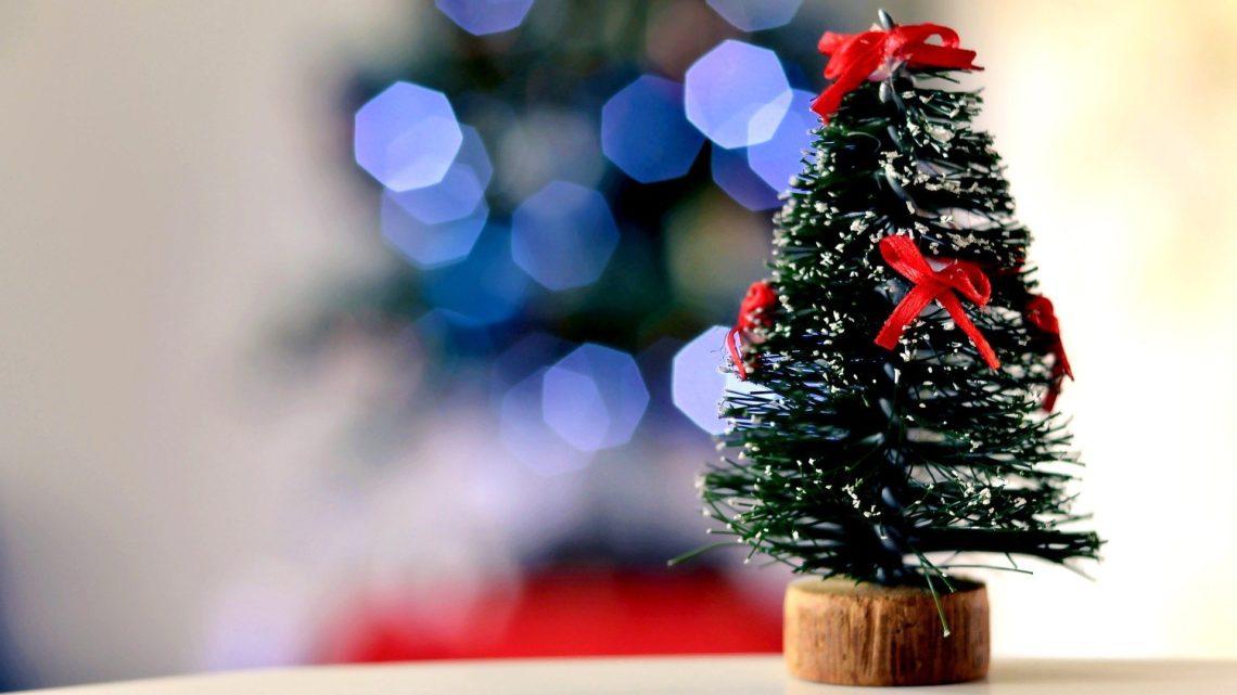 Receitas para Ceia de Natal, Sem Sair da Dieta